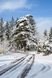Challenging travel in a beautiful snow covered parking lot, snow covered trees. Blue ski, and white clouds royalty free stock photos