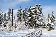 Challenging travel in a beautiful snow covered parking lot, snow covered trees. Blue ski, and white clouds stock photo