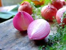 Chalote, cebolla de la primavera, cebolla roja fresca del jardín cerca de ventana ligera Imagenes de archivo