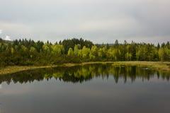 Chalupska deseczka, las odzwierciedla w jeziorze Zdjęcia Stock