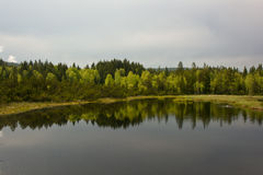 Chalupska slat, forest mirroring in the lake Stock Photos