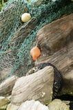 Chalut de pêche au-dessus des roches Photos stock