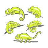 Chamäleonikone Karikaturillustration des gehenden Chamäleonvektors für das Netz stock abbildung