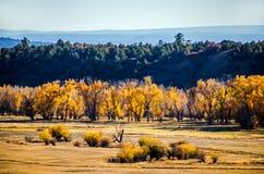 Cham dolina, NM, w spadku Fotografia Stock