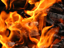 Chama ardente da fogueira Fotos de Stock