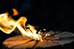 Chama brilhante do fogo fora Imagens de Stock