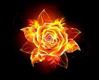 A chama cor-de-rosa de florescência do fogo aumentou ilustração stock