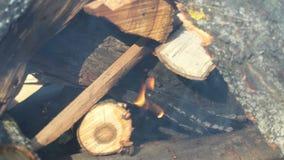 Chama da queimadura do fogo do fumo vídeos de arquivo