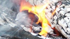 Chama do fogo filme