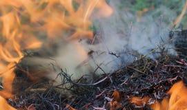 chama do fogo e do fumo Imagem de Stock