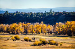 Chama valley, NM, in fall Stock Photography