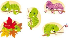 Chamaleon cartoon set Stock Images