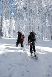 Chamando o alpinista Imagens de Stock Royalty Free