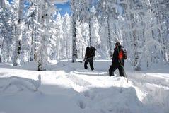 Chamando o alpinista Fotografia de Stock Royalty Free