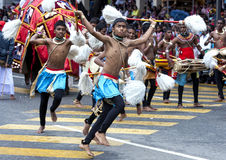 Chamara Dancers perform along the streets of Kandy during the Day Perahera in Sri Lanka. Royalty Free Stock Image