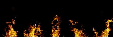 Chamas do fogo real isoladas no fundo preto Modelo em um preto de 5 chamas imagens de stock royalty free