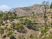 Chamba Bezirk Himachal Pradesh Indien Stockfoto