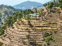 Chamba district Himachal Pradesh India Stock Photo