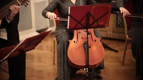 Chamber orchestra. A woman in long dress playing cello stock video footage