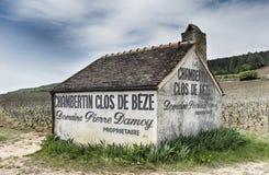 Chambertin Clos De Beze fotografering för bildbyråer