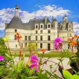 Chambord Royalty Free Stock Image