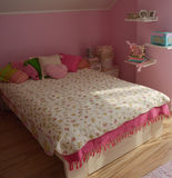Chambre à coucher de poussin de Shaby Image libre de droits