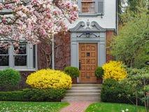 Chambre avec l'arbre de magnolia en fleur images libres de droits