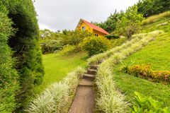 Chambre avec le jardin dans les collines de Boquete Panama Photos libres de droits