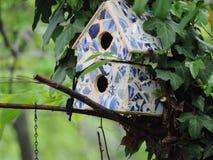 Chambre d'oiseau Photos libres de droits