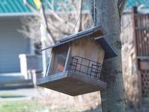 Chambre d'oiseau Photographie stock libre de droits