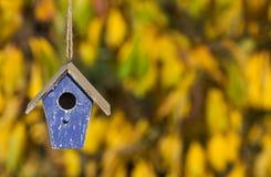 Chambre d'oiseau dans Autumn Fall Sunshine et des feuilles d'or photos libres de droits