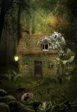 Chambre dans la forêt photos libres de droits