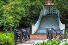 Chambre dans la forêt avec l'escalier Photographie stock libre de droits