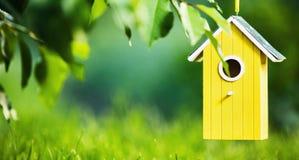 Chambre dans les arbres Photographie stock libre de droits