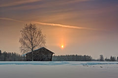 Chambre de bouleau et de grange sous le lever de soleil d'hiver Image stock