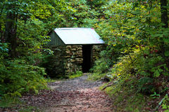 Chambre de ressort dans les bois Photos libres de droits