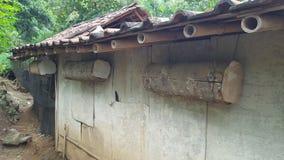 Chambre des abeilles des troncs d'arbre image stock