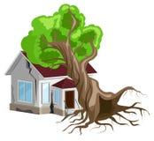 L 39 arbre est tomb sur la maison assurance la maison for Chambre d assurance de dommages