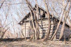 Chambre en bois abandonnée parmi le Treesg Image stock