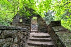 Chambre en pierre abandonnée avec des arbres d'érable à la traînée de forêt vierge Photo stock