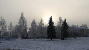 Chambre et arbres dans un paysage d'hiver Photo stock