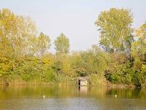 Chambre et Autumn Trees de lac photo libre de droits