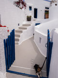 Chambre et chien dans Santorini, Grèce photo stock