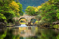 Chambre et jardins de Muckross en parc national Killarney, Irlande Photographie stock libre de droits