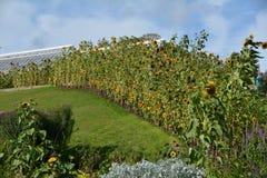 Chambre et jardins le Northumberland de Cragside photo stock