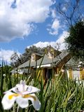 Chambre et pelouse Photos libres de droits