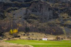 Chambre et ranch islandais de gazon dans la campagne photo libre de droits