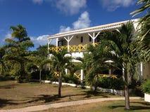Chambre exotique des Caraïbes de Bush de paume photographie stock libre de droits
