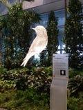 Chambre ouverte du terminal d'aéroport de Changi 4 Image stock