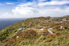 Chambre sur la tête de moutons, liège occidental, Irlande Images libres de droits